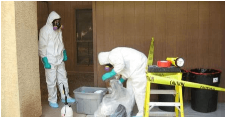 Biohazard Remediation Phoenix