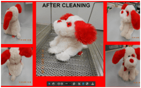 After Cleaning Content Damage